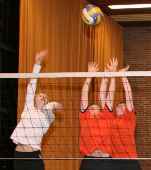 Volleybal: VCO DS1 - Scarabee DS1