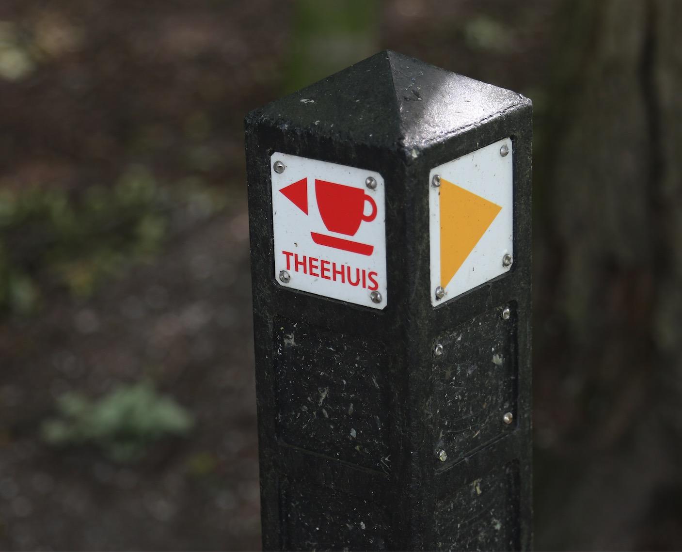 Theehuis: Werfpop