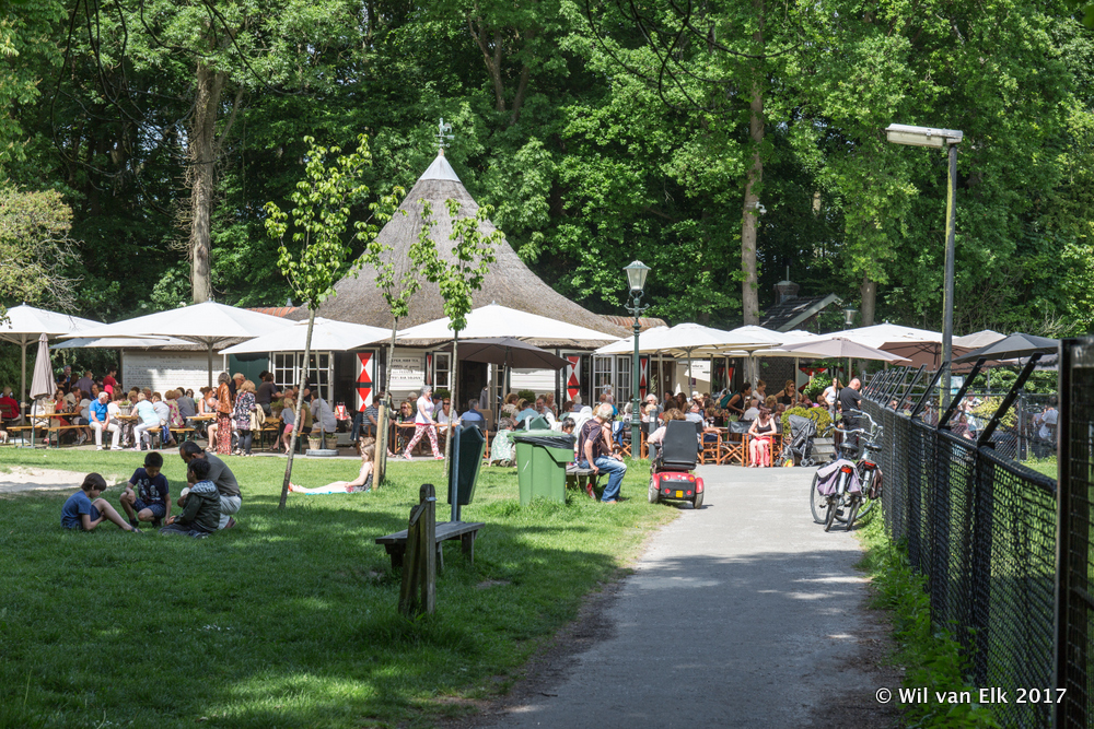 Theehuis: De Rijnsons