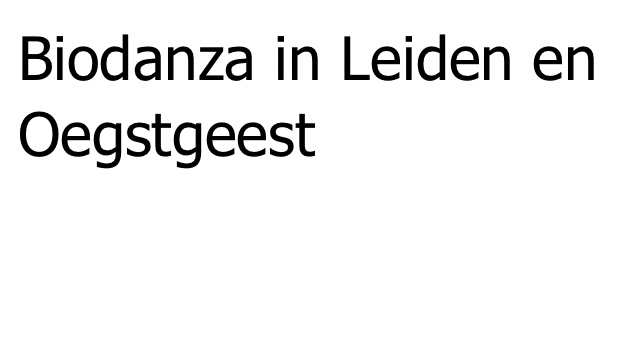 Biodanza in De Paulus op maandagavond: biodanzametleonoor.nl
