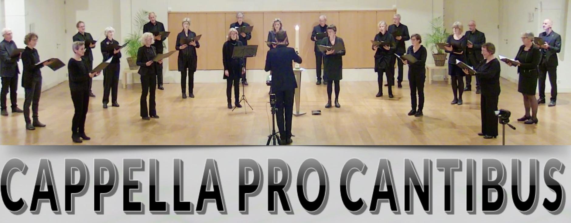 Cappella pro Cantibus  met Allerzielenconcert: pgoegstgeest.nl